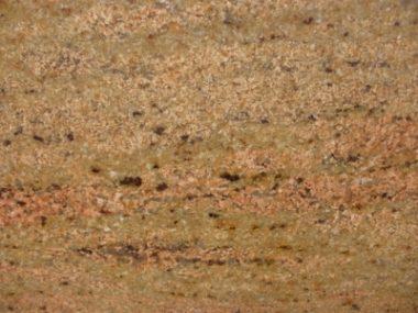 שיבא גולד